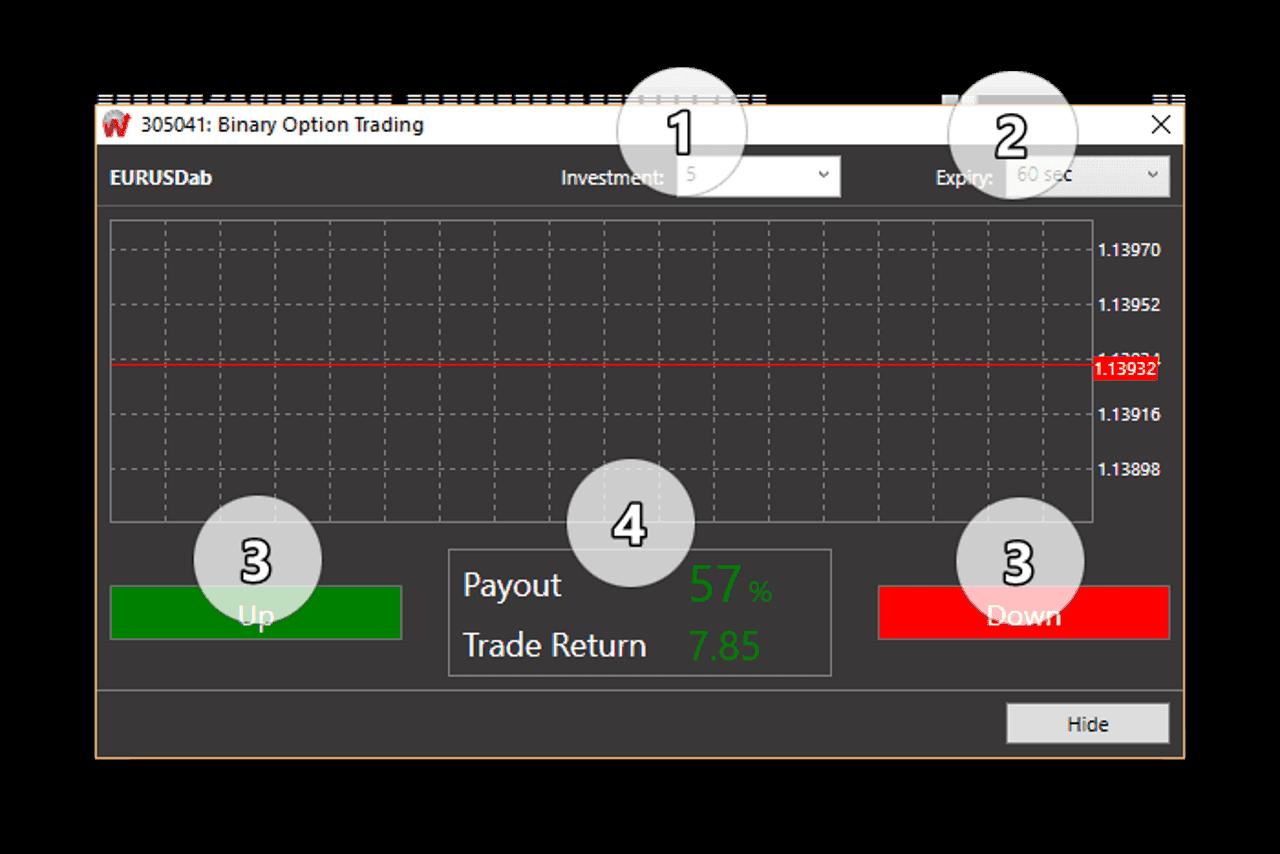 Пример сделки с опционом Wforex 1